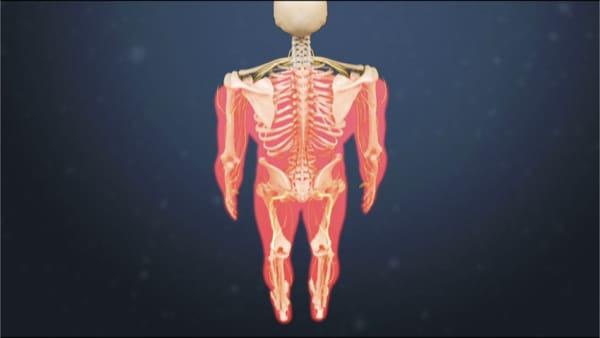 myelopathie cervico arthrosique myelopathie cervicarthrosique et fatigue myelopathie cervicarthrosique irm espace francilien du rachis clinique du rachis versailles paris 3